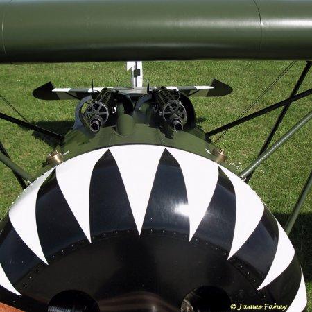 James Fahey Fokker DVIII Walkaround 53