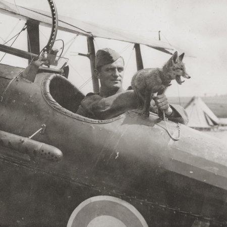 14 Pilot In Cockpit SE