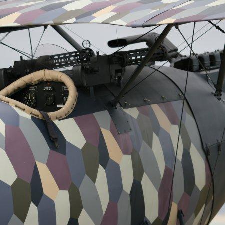Cf 05 Pfalz 9