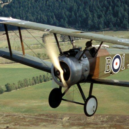 Wanaka 2004 Camel 2