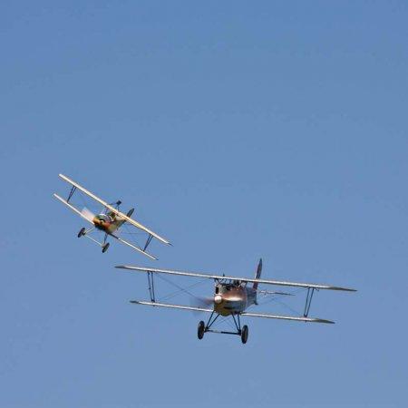Nieuport 11 Vs Pfalz D