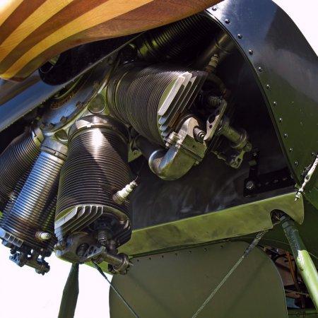 James Fahey Fokker DVIII Walkaround 47