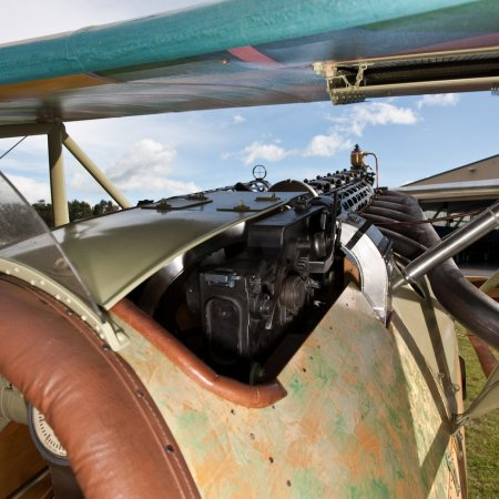 Albatros DVa Walkaround