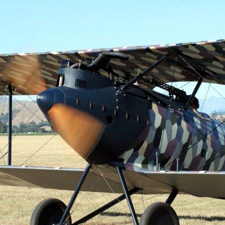 Cf 05 Pfalz 5