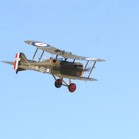 Se 5 302 Fly