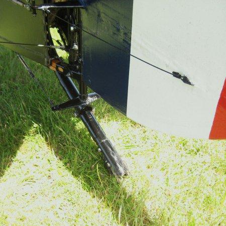 Snipe 3586