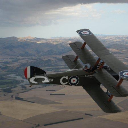 Soptripe 029 Fly