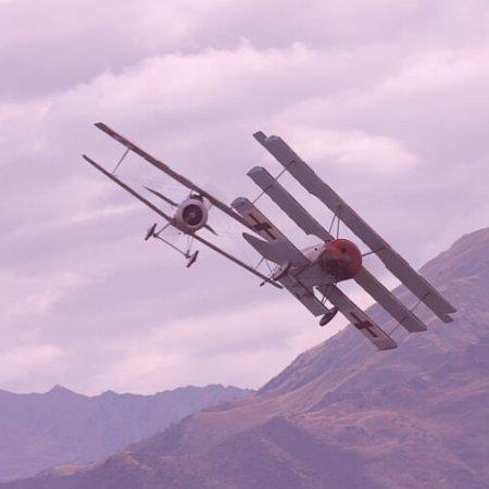 Wanaka 2006 JF Fokker And Nieuport 2